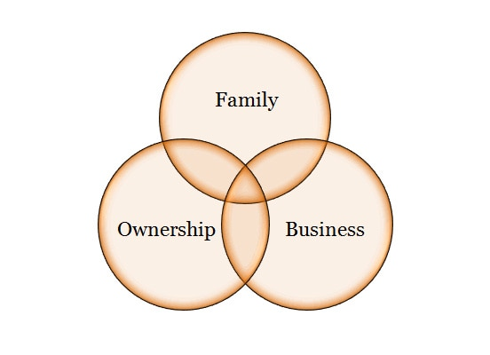 corporate governance in family business pdf